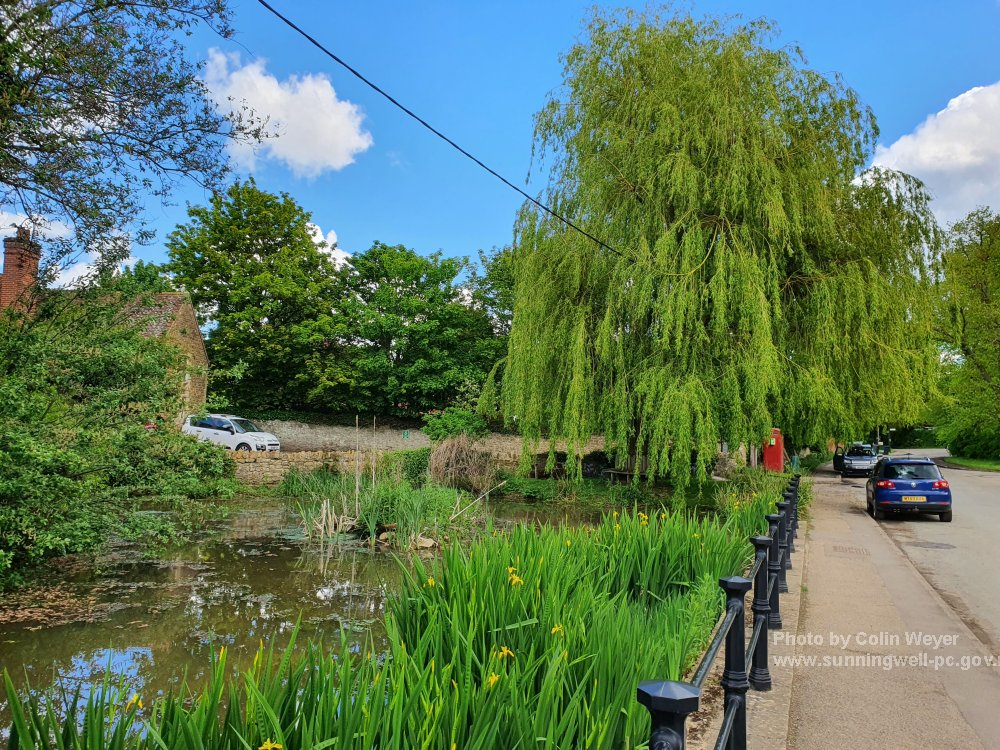 Sunningwell Village Pond 2021
