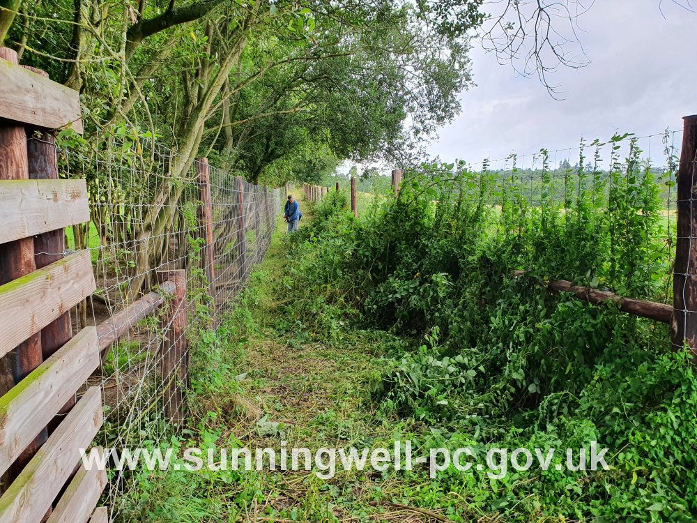 Clearing the last part of the heavily overgrown Quarry Footpath, Bayworth